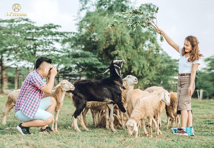 {Kinh nghiệm} chụp ảnh cưới tại phim trường Thảo Nguyên Hoa Long Biên