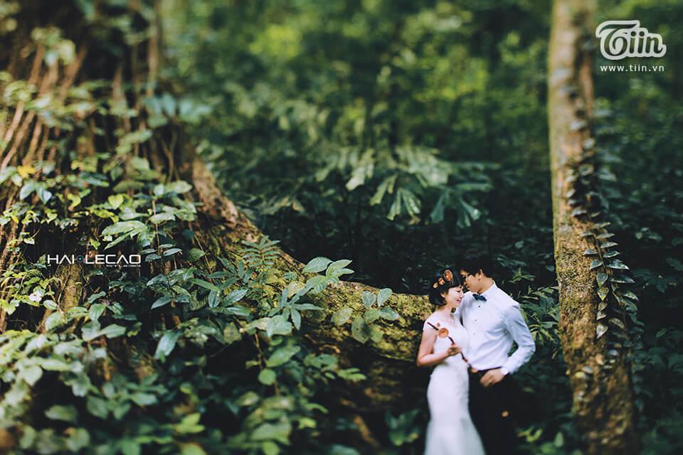 Top 3 studio và 10 địa điểm chụp ảnh cưới đẹp ở Ninh Bình